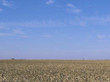 Приватизация земли