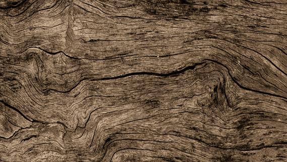 В Китае создали искусственную древесину с повышенной прочностью