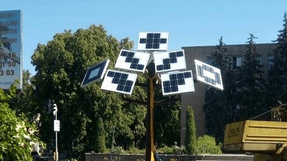Солнечное дерево в Черкасской области