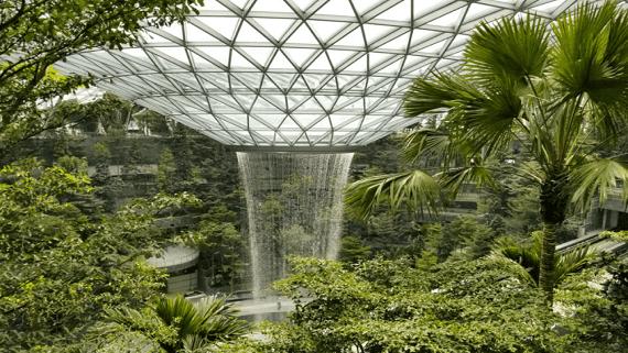 В Сингапуре построен самый высокий в мире водопад под крышей
