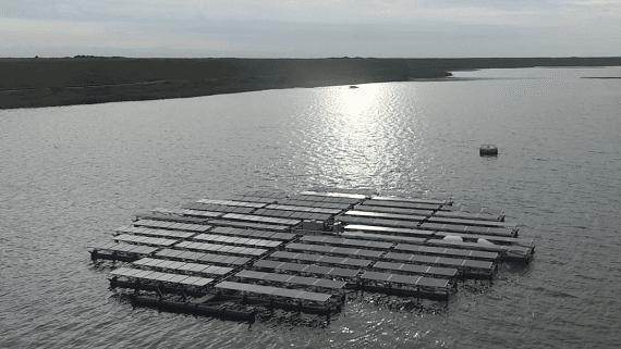 На севере Нидерландов построят крупнейшую в мире плавучую солнечную станцию
