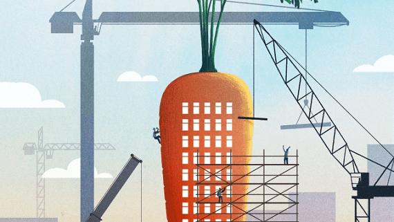 Ученые придумали как сделать бетон более прочным с помощью овощей