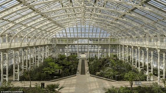 Крупнейшая в мире оранжерея Temperate House открывается после пятилетней реставрации