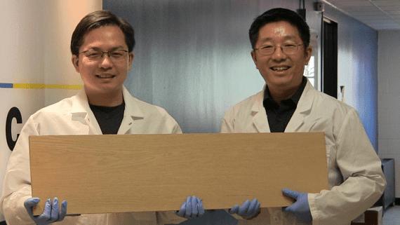 Новий спосіб обробки деревини, що підвищує її жорсткість більш ніж в 10 разів
