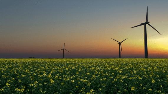 Норвезькі компанії побудують в Україні вітрові та сонячні установки потужністю до 300 МВт
